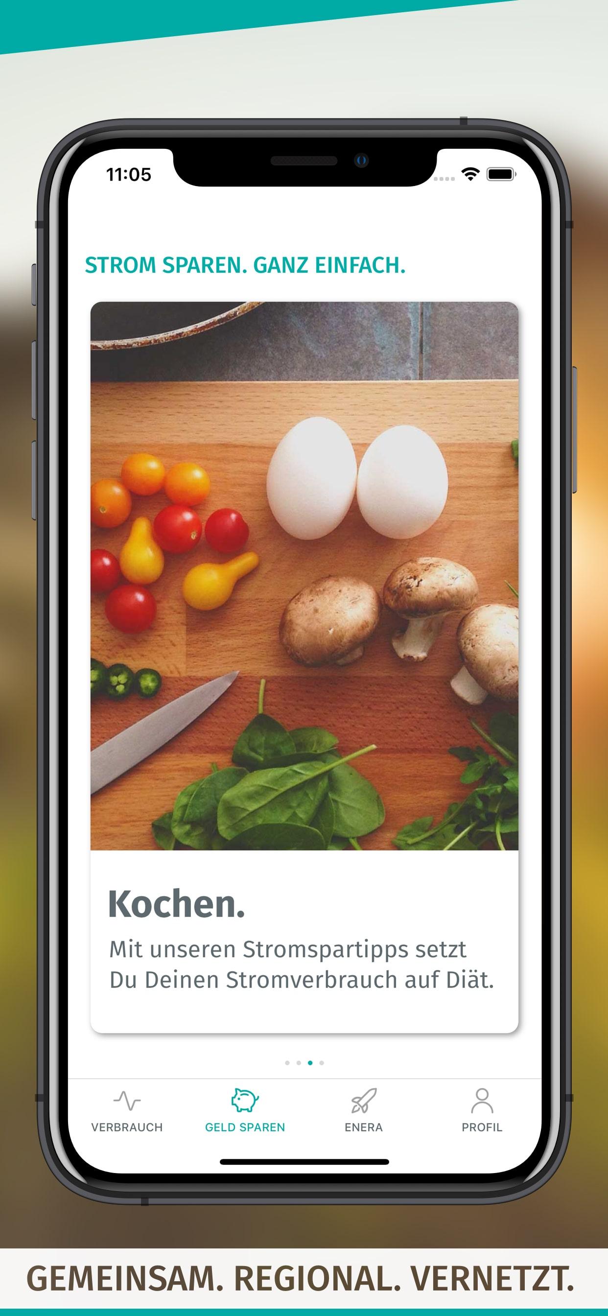 enera App-Screen-Stromspartipps