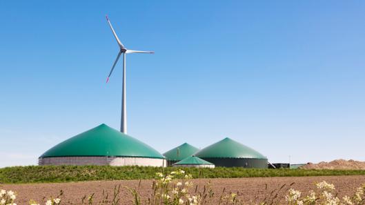 Biogasanlage Natur