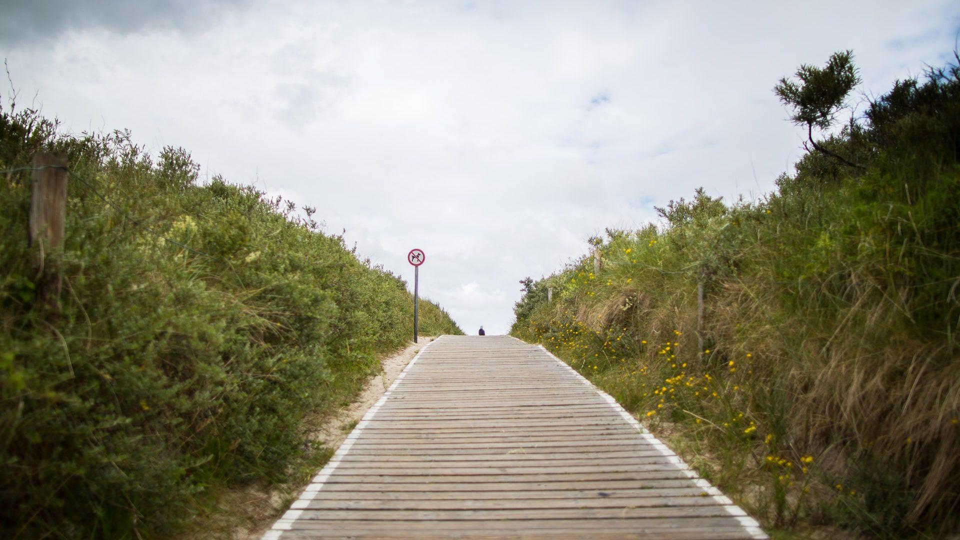 Steg in Langeoog